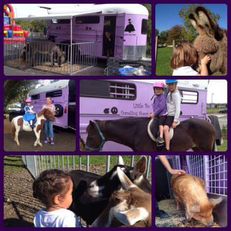 Mobile Barnyard and Pony Rides